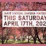 ニューヨーク日系人会のオンライン桜祭り (2021年 4月17日 (土))
